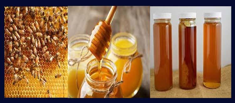 The Best Honey reviews